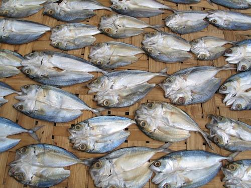 iloilo dried fish