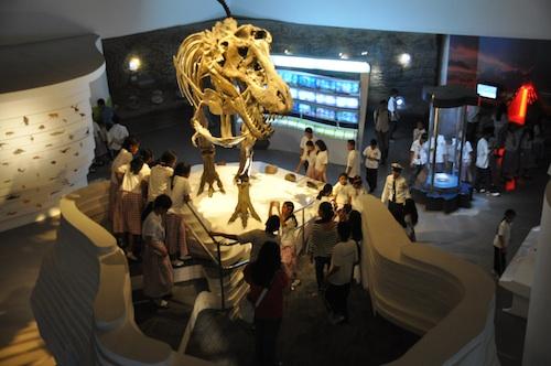 Dinosaur Replica manila