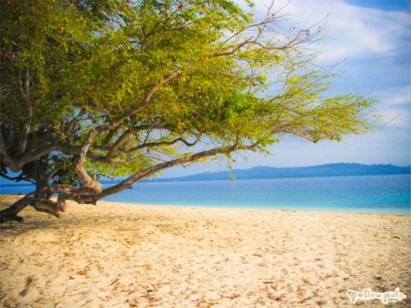 Potipot Island (photo by Potipot Island FB Page)