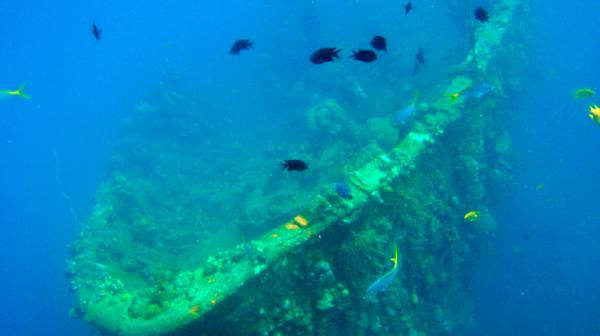 Coron Ship Wrecks photo by PhilippineDiveSafari.com