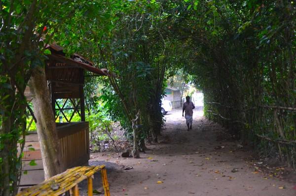 Tusker Trail Entrance