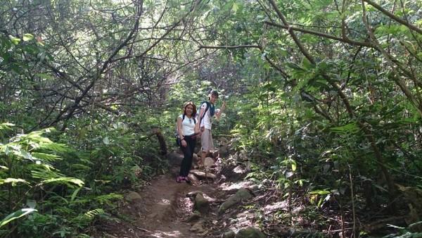 Pico de Loro trail