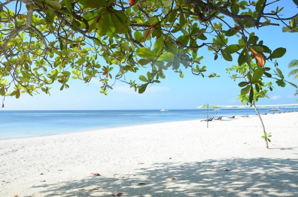 Dive Sites in Bohol