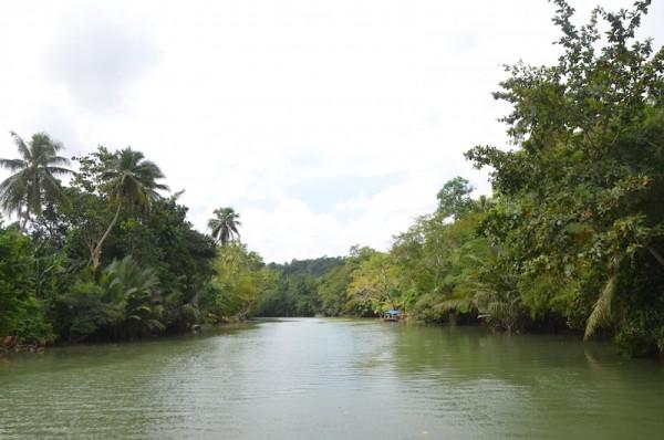 Loboc River Cruise