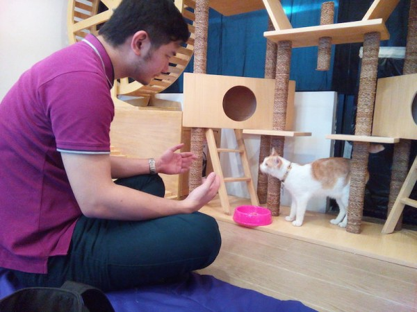 The Cat Cafe Owner and Chaka