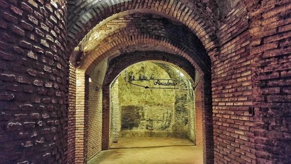 Grupo Yllera Winery in Spain