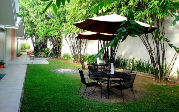 Cafe-like lawn