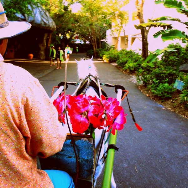 Kalesa ride on weekends