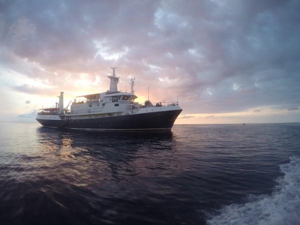 MV Discovery Palawan at sunset