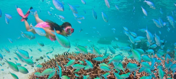 Dive Tumon Guam