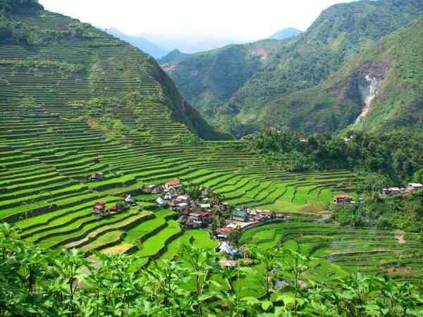 Trek Batad Rice Terraces