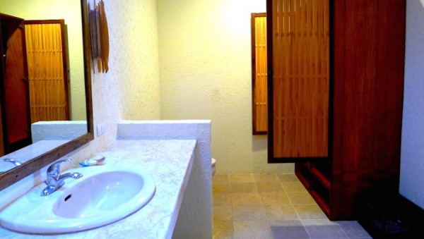Toilet, sink and cabinet with ironing equipment