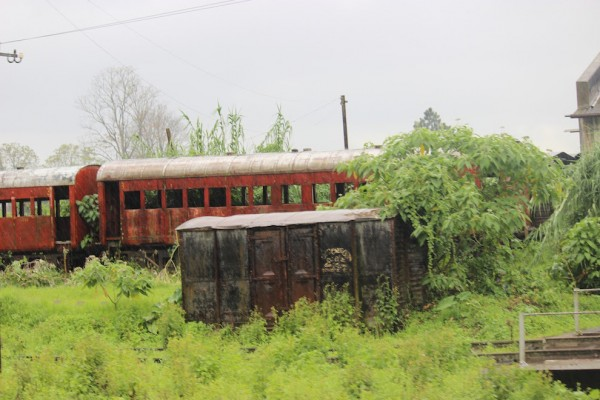 Rusted trains