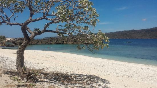 Silad Island in Bulalacao photo via Tripadvisor
