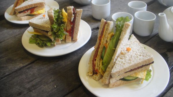 Delectable sandwiches from the cafe