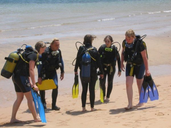 Katharina getting ready to dive
