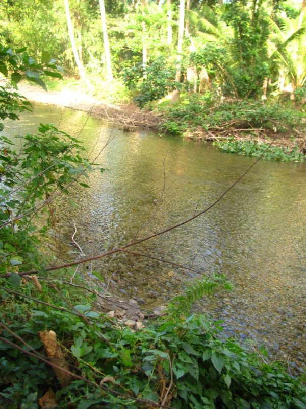 The flowing Nabaoy River at Finca Verde