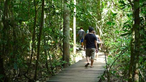 Palawan Underground River Park