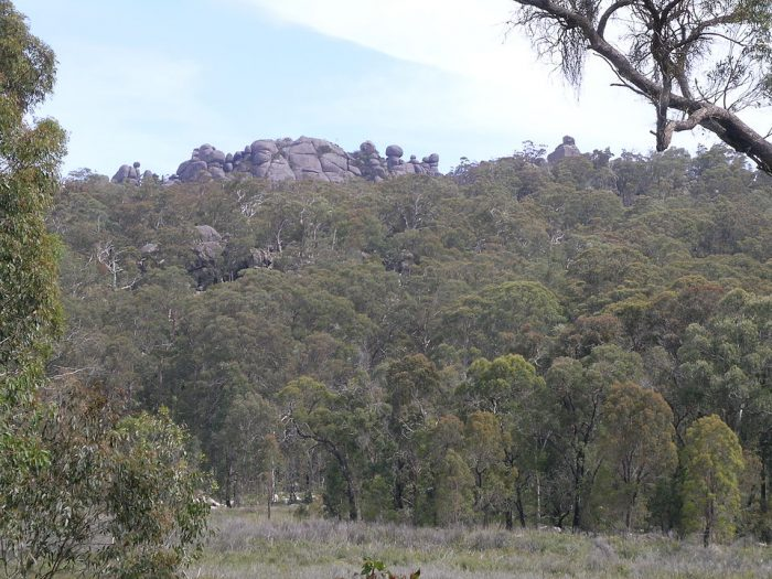 Cathedral Rock National Park, NSW by Cgoodwin via Wikipedia CC