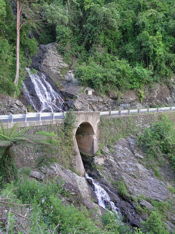 Newell Falls, Waterfall Way, Dorrigo National Park by Cgoodwin via Wikipedia CC