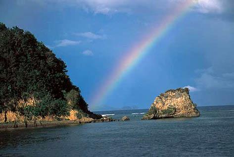 Resort in Misibis Bay