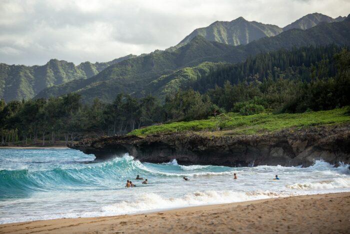 Road tripping around Oahu photo by @waikatospear via Unsplash