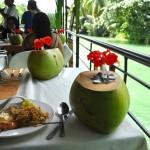 Bohol River Cruise
