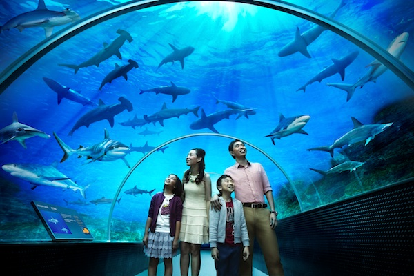 Image result for Aquaria KLCC KLCC Convention Centre Complex.