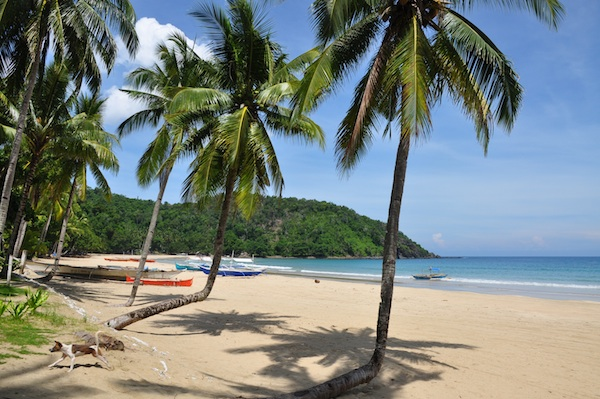 Puerto Princesa Beach Resorts The Best Beaches In World