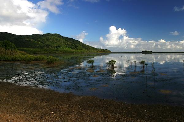 Early Morning in Palaui