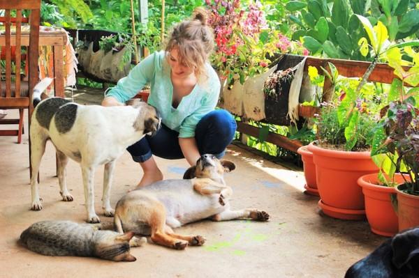 Lifestyle in Costa Rica - Charlie pet sitting dogs