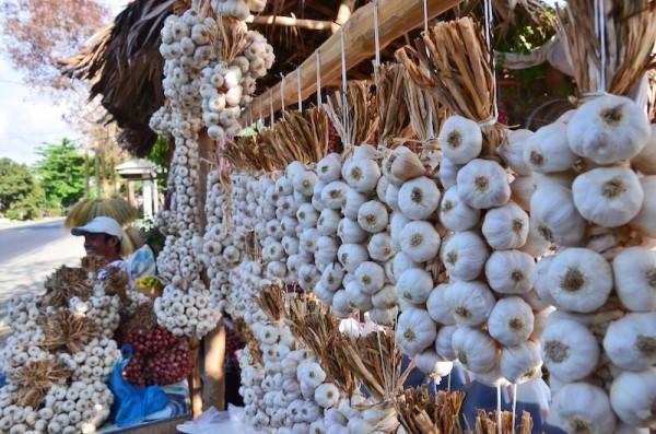 Garlic and Vinegar Store in Ilocos Norte Highway