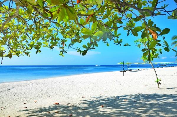 South Palms Resort Beach Front