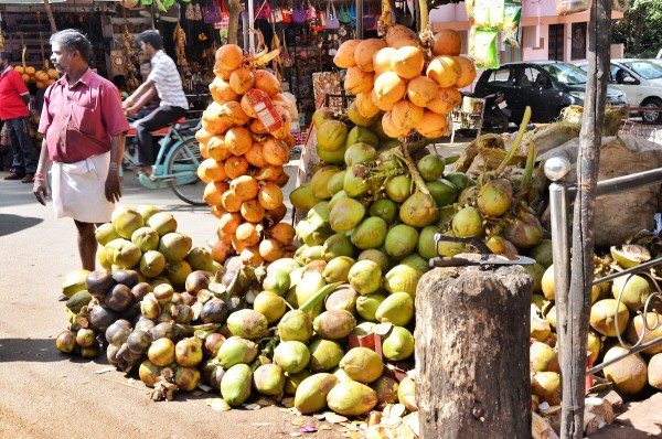 Coconut Juice vendor outside Padmanabhapuram Palace Complex