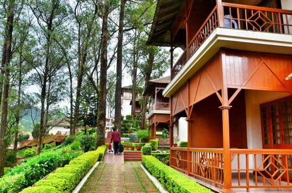 Tea County Resort in Munnar