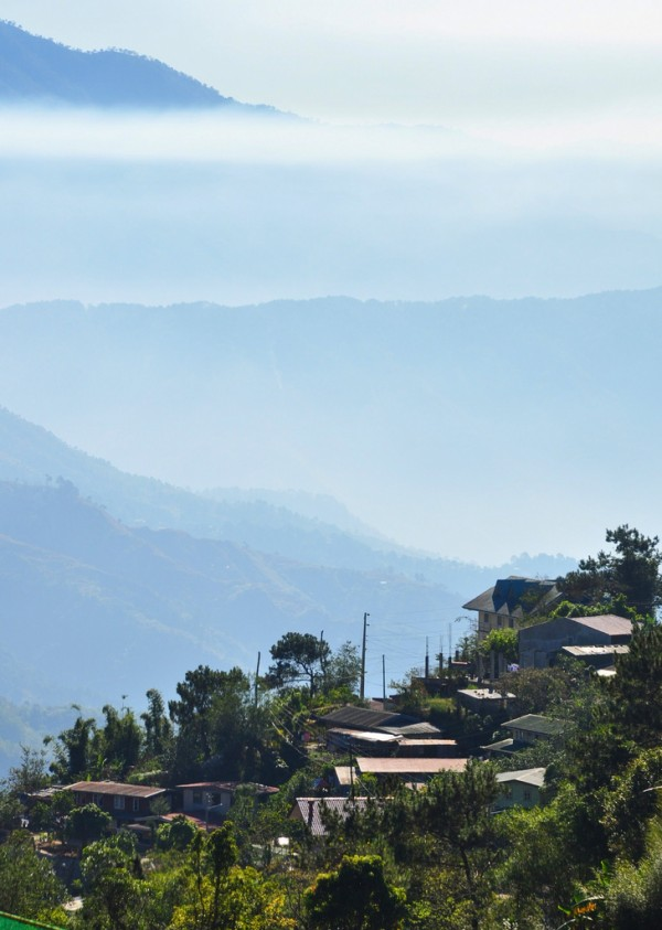 Foggy Morning in Baguio City