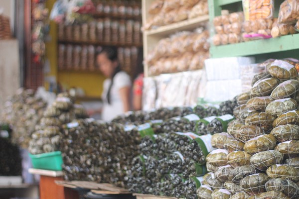 SMB the staple pasalubong from Leyte (Sagmani, Moron, Binagol) can be found at Calle Zamora, downtown Tacloban.