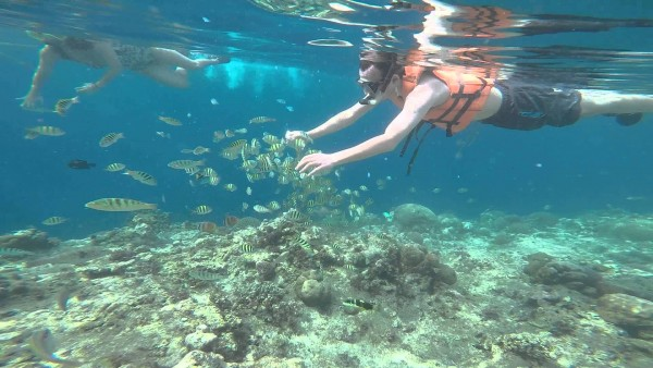 snorkeling in Balicasag Island photo via Youtube
