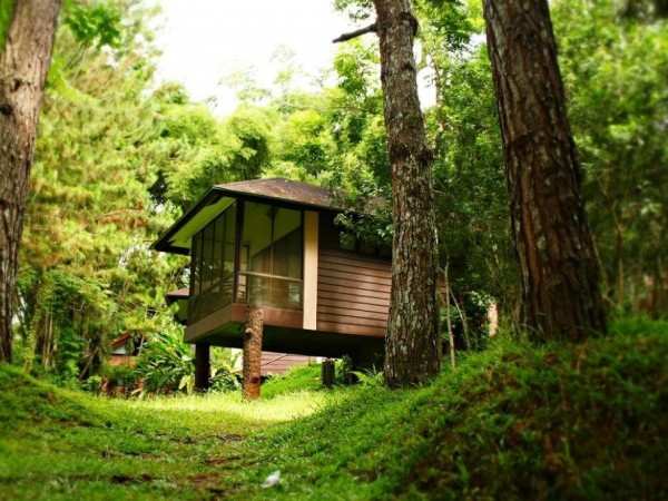 Eden Nature and Park Rooms
