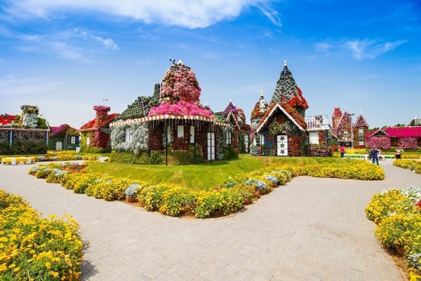 Miracle Garden in Dubai