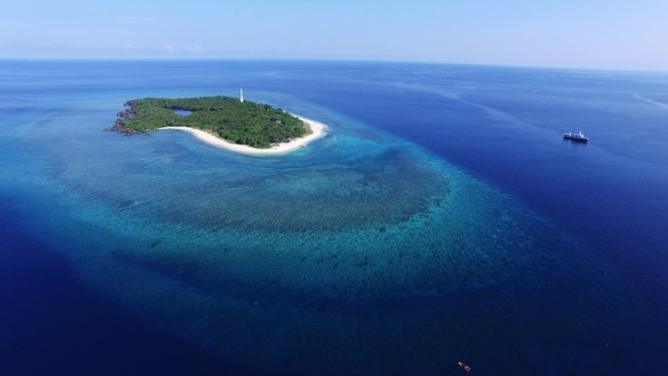 aerial shot of Apo Mayor island