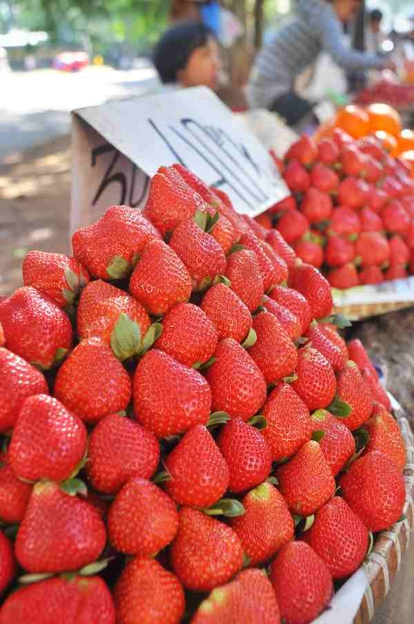 Strawberries from Benguet