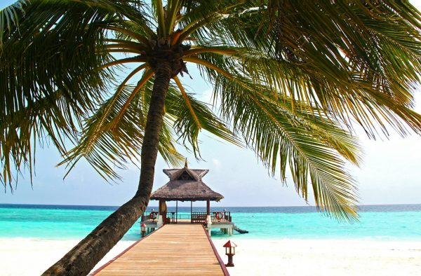 Ultimate Maldives Travel Guide and Tips