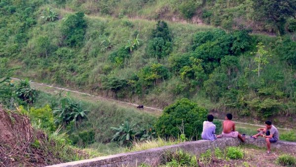 Locals enjoying the view
