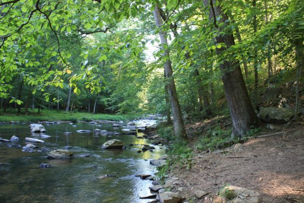 The Gunpowder Falls Park