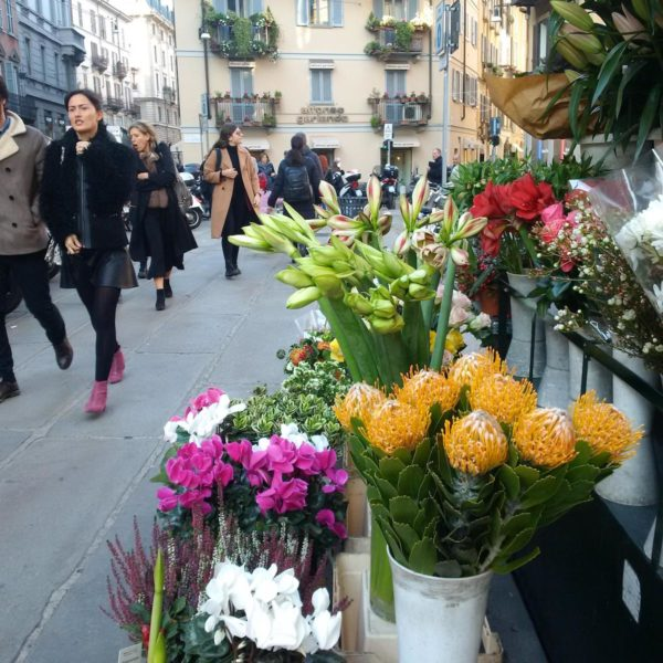 Beautiful flowers for sale on the roads