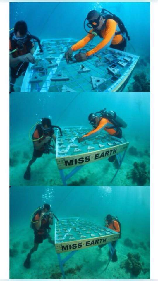 Photo from CORAL Movement Facebook page