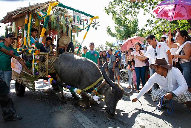 Pulilan Carabao Festival