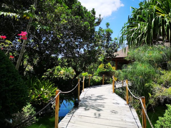 Wooden Path to the Hotel Reception