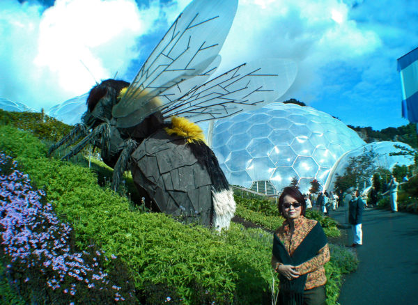 A gigantic bee amidst a bed of flowering plants.
